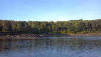River banks in Penobscot Bay near Castine, Maine