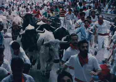 Running with the bulls gets started