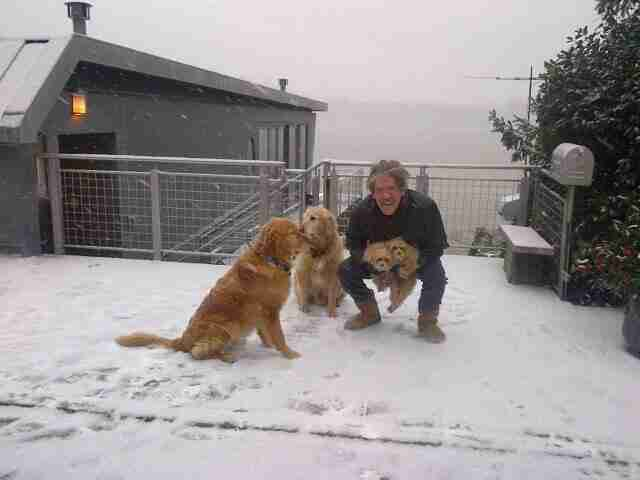 Geraldo takes the four dogs for a walk during a snowy day in Edgewater, New Jersey.  Circa 2014.