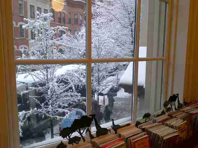 Snow Covered trees viewed from the window, circa 2013.