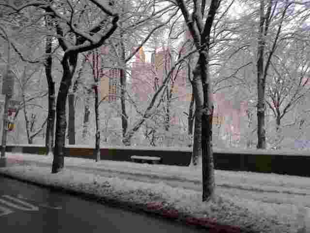 Snow covered Central park in New York City, 2014.